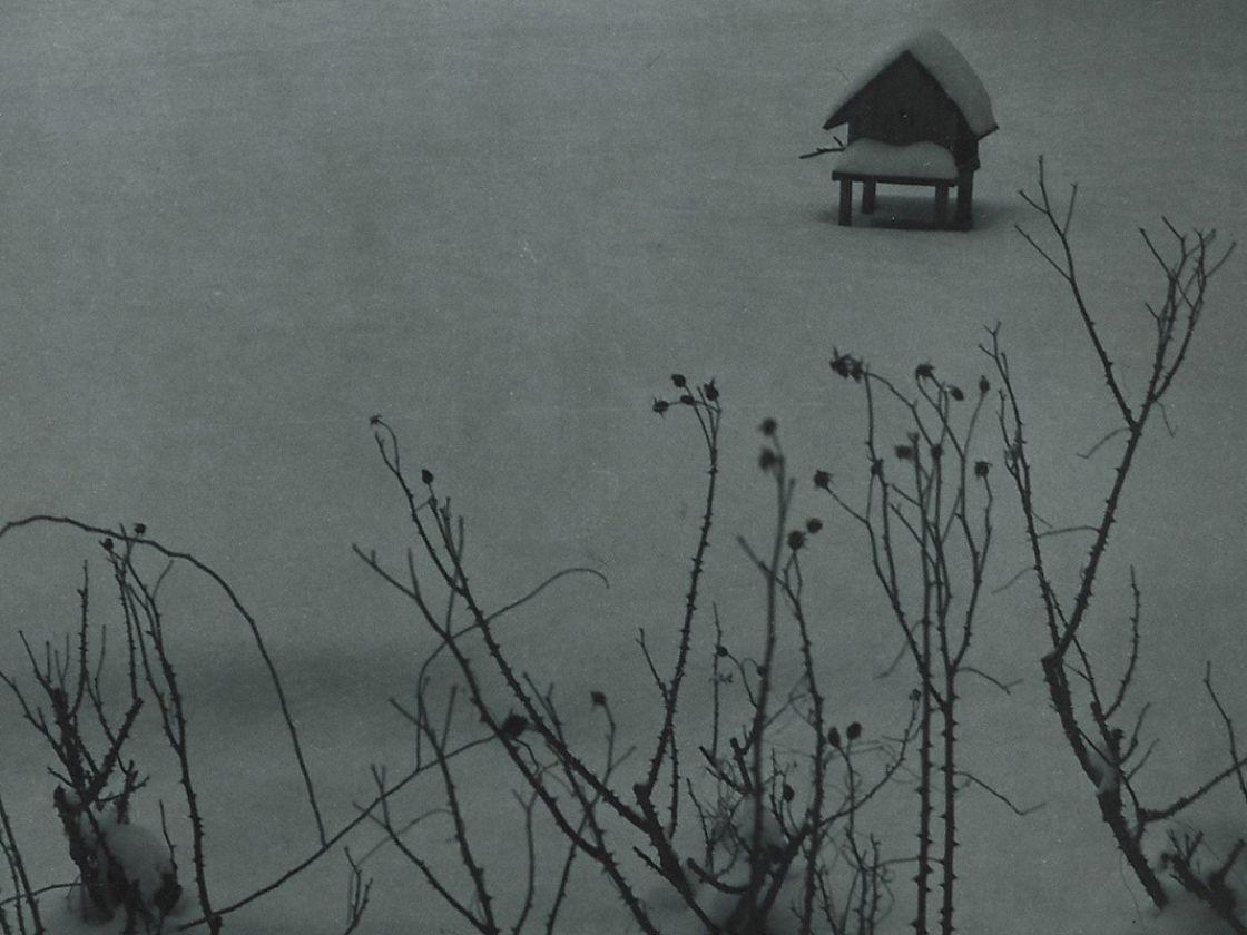 cora frost fotos hp_c_walter ladengast3_HP